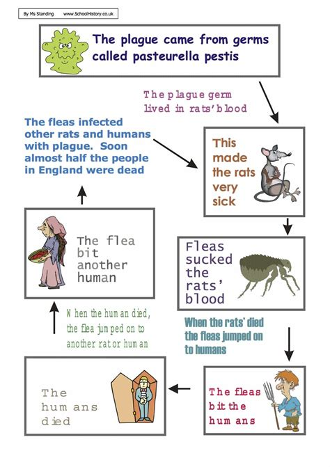 diagram of the great plague worksheet year 8 9 pdf