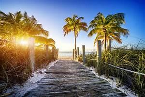 Bilder Von Palmen : hawaii oder kalifornien die sch nsten str nde der usa ~ Frokenaadalensverden.com Haus und Dekorationen