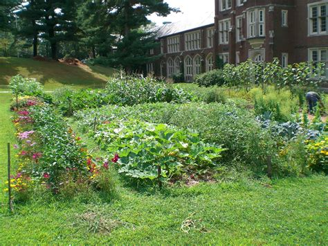 Growing Kids Up Green  Pro Landscaper