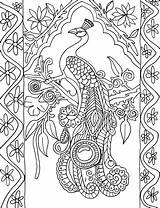 Coloring Peacock Tags sketch template