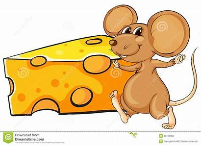 Mouse Cheese Brown Beside Clipart Slice Background