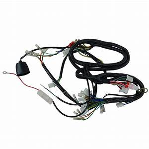 Sunl Dune Buggy Chassi Wiring Harnes