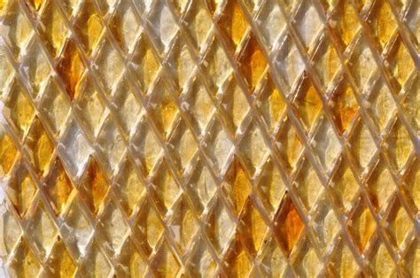 fusion glass honey gold harlequin pattern   glass