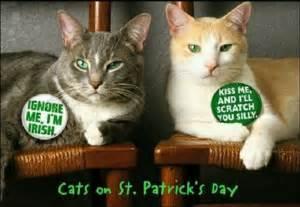 Cats/St Patrick's Day | Luck O' The Irish | Pinterest