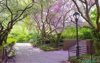 Spring Scenes Nature Desktop Flower Wallpapertag