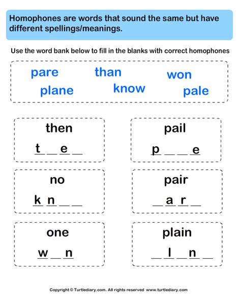 fill in the blanks with correct homophone worksheet turtle
