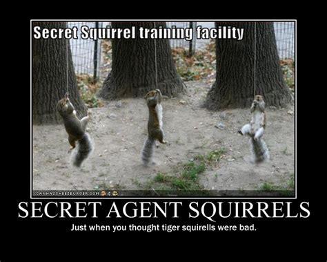 Agent Squirrel Demotivational By Stickbomber On Deviantart