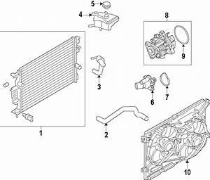 Ford Fusion Radiator Coolant Hose  Upper   2 0 Liter Turbo