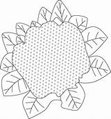 Cauliflower Purple Coloring Pages sketch template