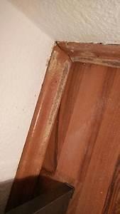 Schimmel Mit Essig Entfernen : wie entferne ich diesen schimmel fotos anbei essig essenz schon getestet reinigung ~ Watch28wear.com Haus und Dekorationen