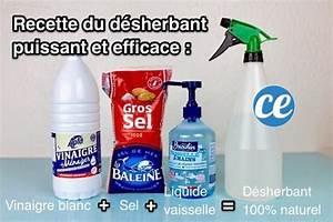 Vinaigre Blanc 14 Desherbant : comment tuer les mauvaises herbes et emp cher qu 39 elles repoussent bricolage cleaning ~ Melissatoandfro.com Idées de Décoration