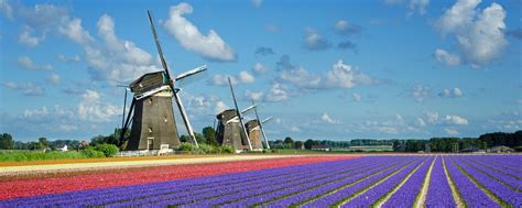 Get a Unique Perspective with our Holland Barge Cruises ...