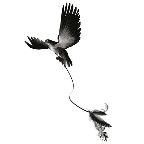 tatouage ephemere oiseau plumes