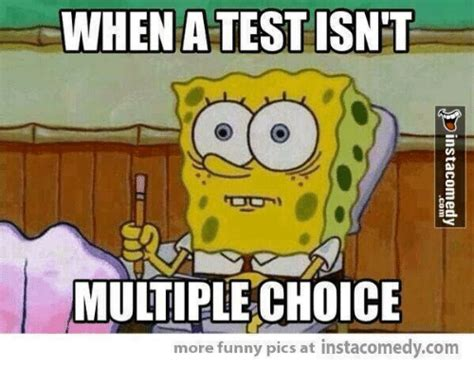 Multiple Picture Meme - 25 best memes about multiple choice multiple choice memes