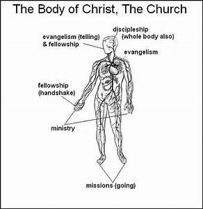 The Stanley Stylus  The Body Of Christ