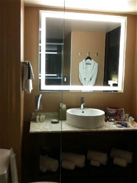 bathroom vanity picture  dana hotel  spa chicago
