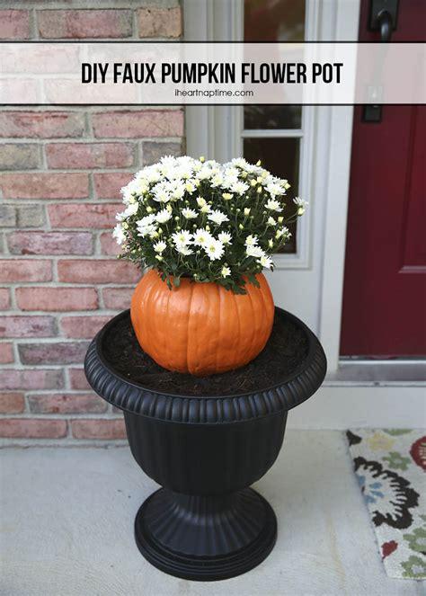 fun     pumpkins fun squared