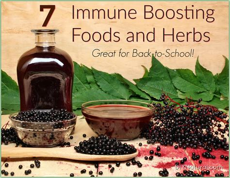 7 back to school and 7 immune boosting foods and herbs for back to school immunity