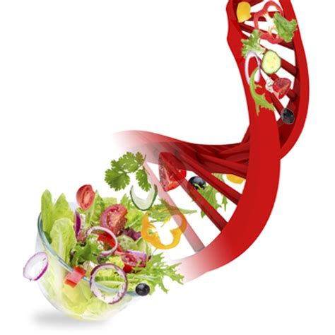 Genetics & Diet - Personalised Nutrition - Michelle Tolmay ...