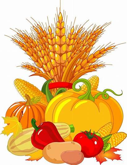 Harvest Clipartbest Fall Thanksgiving Wheat Craft Pumpkins