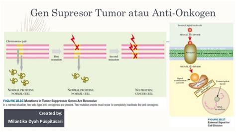 biologi molekuler kanker created by milantikadp