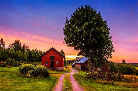 Sunset Trees Road Home Landscape Rustic Farm House