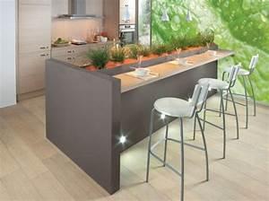 ilot cuisine cuisines aviva idee maison future With meuble de cuisine rustique 3 sims 4 deco rustique cuisine kitchen chic moderne
