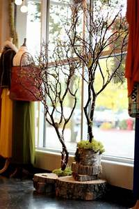 Simple, Beautiful, Diy, Home, Decor, Ideas, Out, Off, Tree