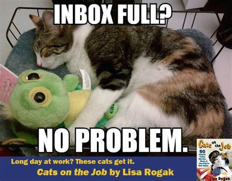 Inbox Meme - nils udderberg macmillan library