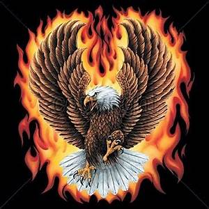 Eagle w Flames Fire s 5X T Shirt Wild Motorcycle Bike ...
