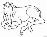 Horses Pages Coloring Horse Printable sketch template