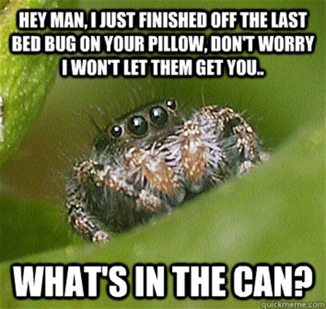 Bed Bug Meme - hey man i just finished off the last bed bug on your pillow don t worry i won t let them get