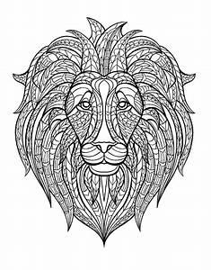 Afrique Tete Lion Afrique Coloriages Difficiles Pour