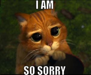 I Am Sorry Meme - gina l maxwell s blog book updates random thoughts other news