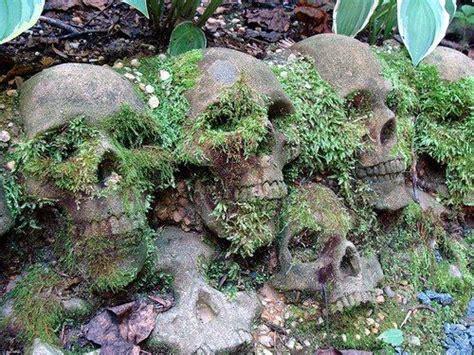 Backyard Skulls by 25 Best Ideas About Garden On
