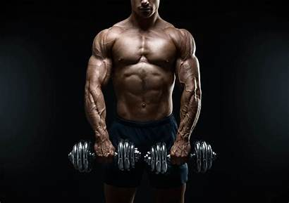 Lean Muscle Gain Weight Grow Fast Way