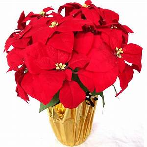 Home Accents Holiday 21 In Silk Poinsettia Arrangement