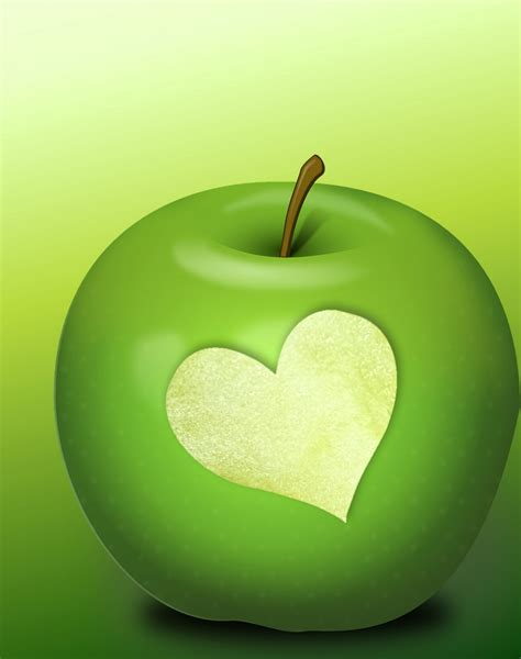 Green Apple Free Stock Photo - Public Domain Pictures