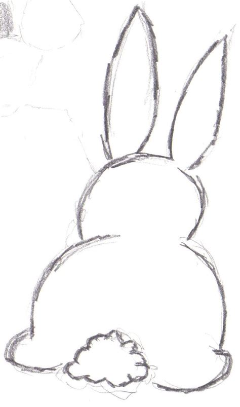 bunny outline drawing drawing bunny drawing drawings