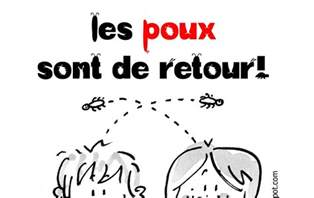 Duree De Vie D Un Poux by Danger 233 Cole 1001 Pattes