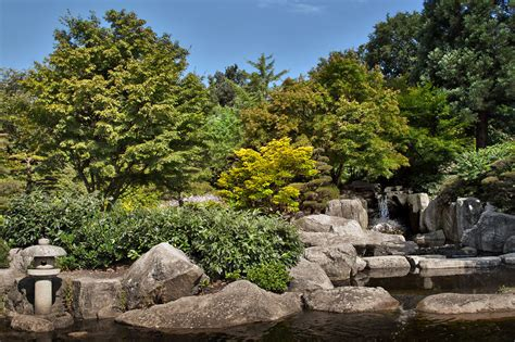 Japanischer Garten Sträucher by Contest 24 Foto Kreativcontest Quot Strauch Quot