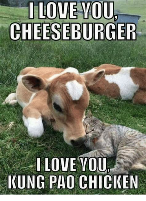 Cheeseburger Meme - i love youl cheeseburger i love you kung pao chicken love meme on sizzle