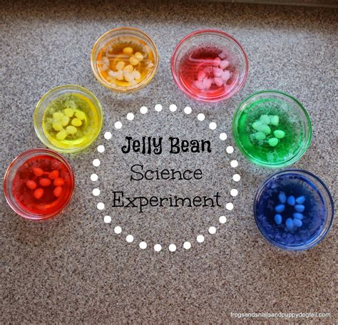 creative ways to play craft and more with jelly beans 873 | jellybeanscienceexperiment1