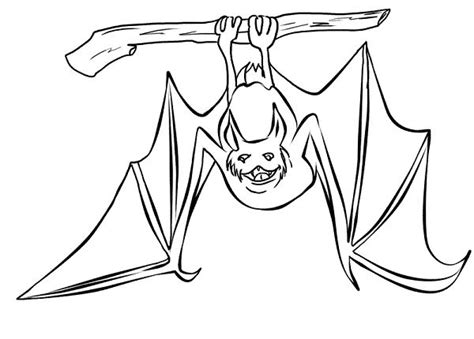 The Gallery For --> Upside Down Hanging Bat Template
