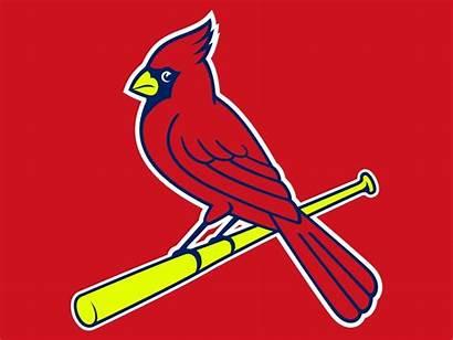 Cardinals Louis St Clip Clipartmag