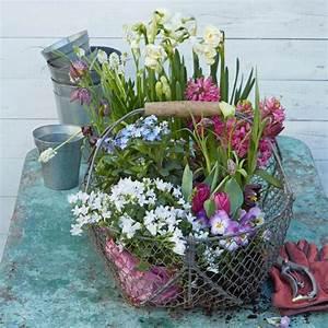 Blumenkübel Bepflanzen Sommer : garten im fr hling saisonale gartentipps living at home ~ Eleganceandgraceweddings.com Haus und Dekorationen