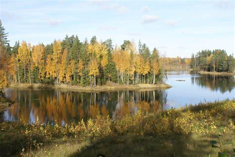 Gaidot rudeni, aicina ziņot par bērzu un kļavu lapu ...