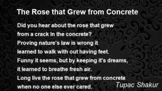 Tupac Rose Grew Concrete Poem Photo