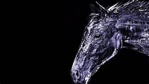 3D Horse Animals Wallpaper Pc Wallpaper | WallpaperLepi