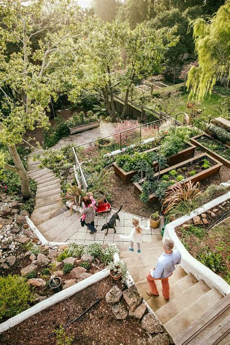Steep Backyard by Best 25 Steep Hillside Landscaping Ideas On